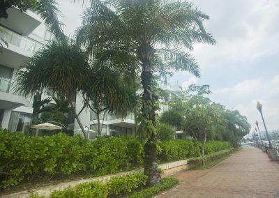 Marina Collection at Sentosa Cove